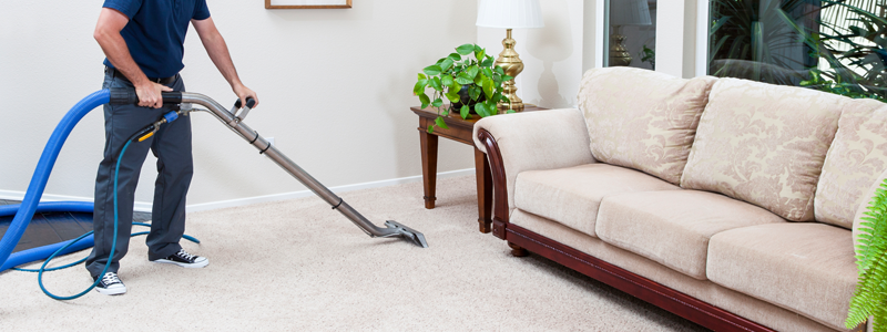 Best Shark Vacuum Cleaners Definitive List Of 2019